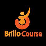 Brillo Course